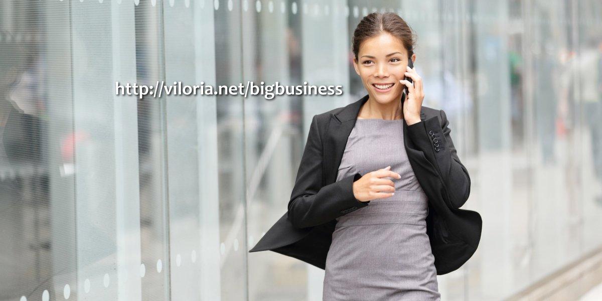 Big Business at Viloria.net