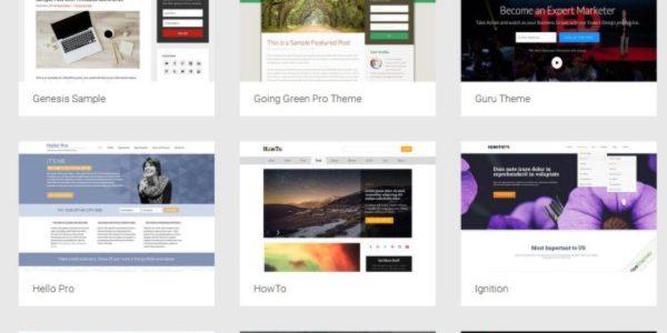 Impact Instrument: 85 WordPress Themes